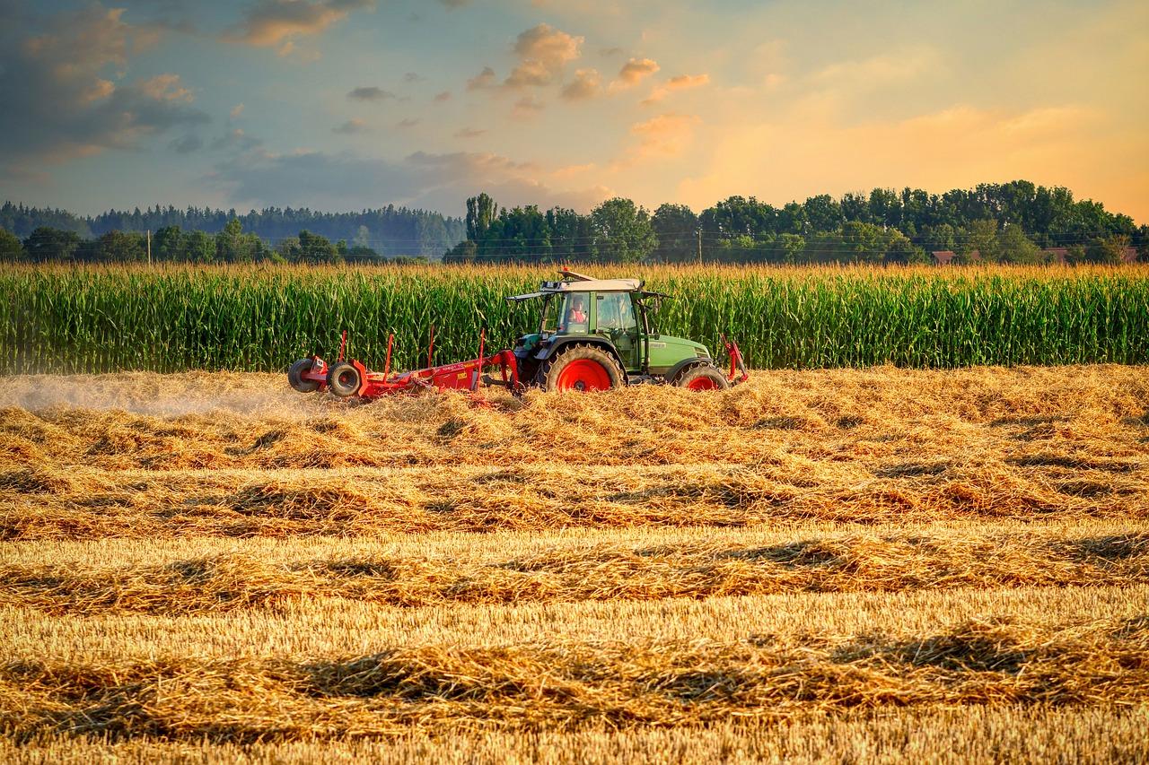 трактор на закате